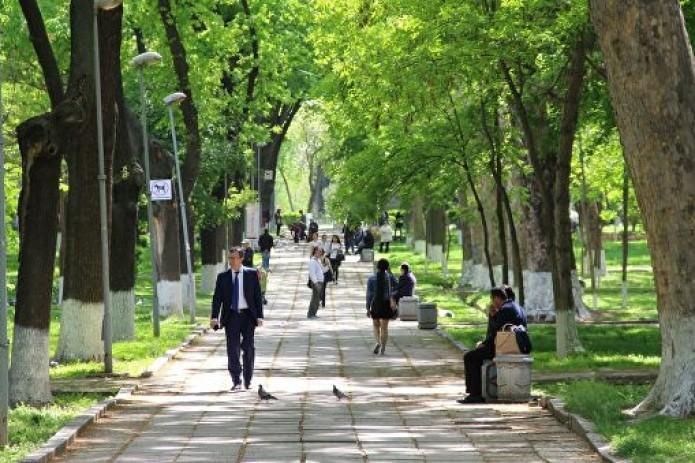 Сегодня температурный фон в Узбекистане начнет снижаться - Узгидромет