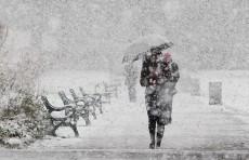 Погода на выходные: дождь, снег, туман и температура воздуха ниже нормы на 10-12°