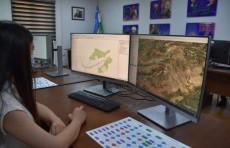 ФАО способствует цифровизации лесного хозяйства в Узбекистане