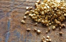 Для старательской добычи драгоценных металлов выделено 403,4 гектаров площади