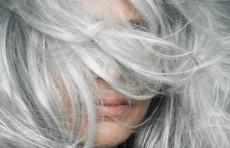 Седину волос скоро можно будет останавливать, не окрашивая волосы