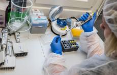 Ученые обнаружили уязвимое место у коронавирусов