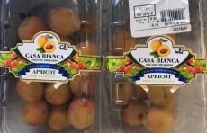 На индийский рынок поставлена первая партия узбекских абрикосов