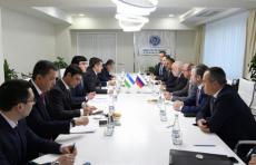 Российская «Ренова» предлагает создать в Узбекистане СП по производству солнечных панелей