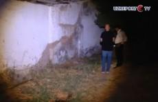 Вонь в Сергелийском районе: UZREPORT TV провел ночной рейд