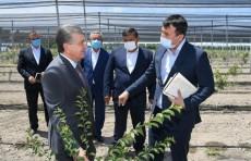 Президент Шавкат Мирзиёев начал свой рабочий визит в Фергану