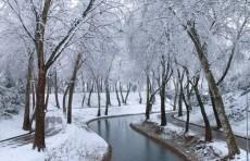 В Узгидромете рассказали о погоде в декабре