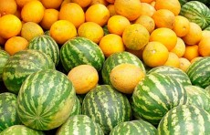Экспорт арбузов и дынь за пол года принес Узбекистану $7,4 млн.