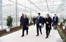 Шавкат Мирзиёев ознакомился с деятельностью агропромышленного комплекса «Бухоро Варнет»