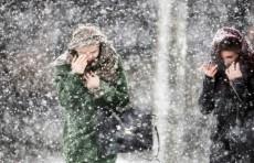 «Будет очень холодно». Синоптики предупредили об аномальном похолодании в Узбекистане